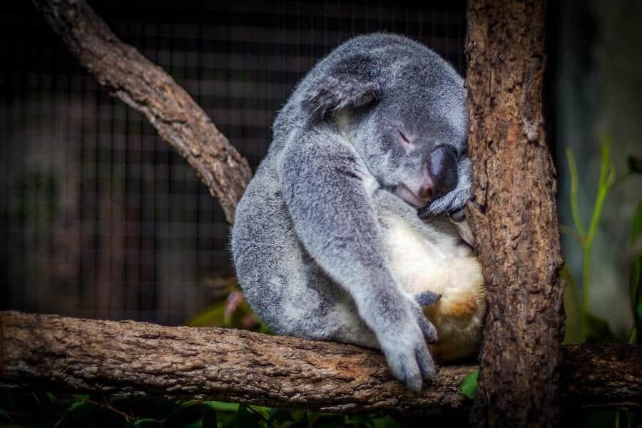 innere-unruhe-ueberwinden-schlafen