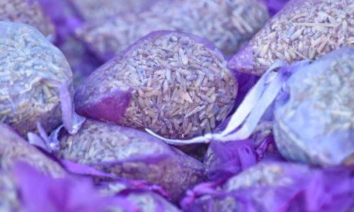 Lavendeltee: Zubereitung, Wirkung & Mehr